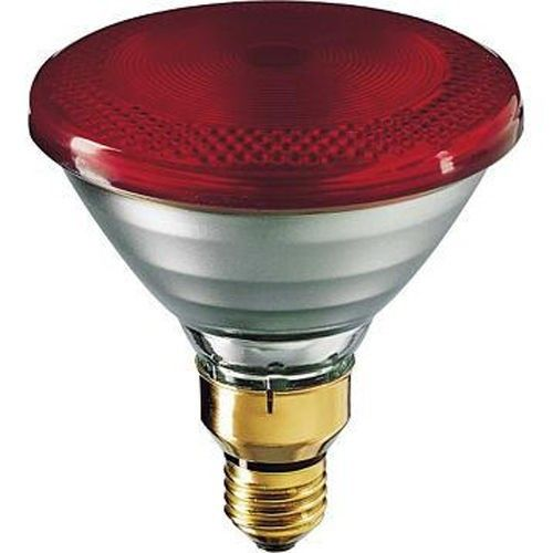 Philips Heat Lamp