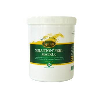 Equi-Life Solution4 Feet Matrix - 600 GM
