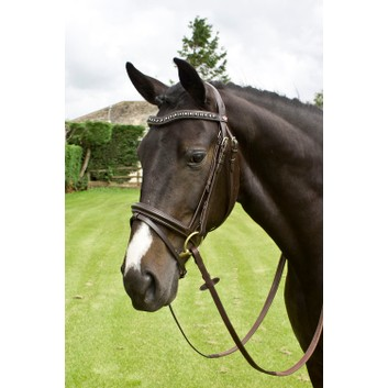 Whitaker Lynton Flash Bridle with Spare Browband Black