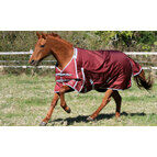 Guardian Equestrian Electric Fence Buster Turnout Rugs