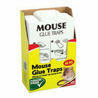 The Big Cheese Mouse Glue Trap - 48 Value Pack