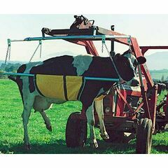 Anlift Cow Lifter