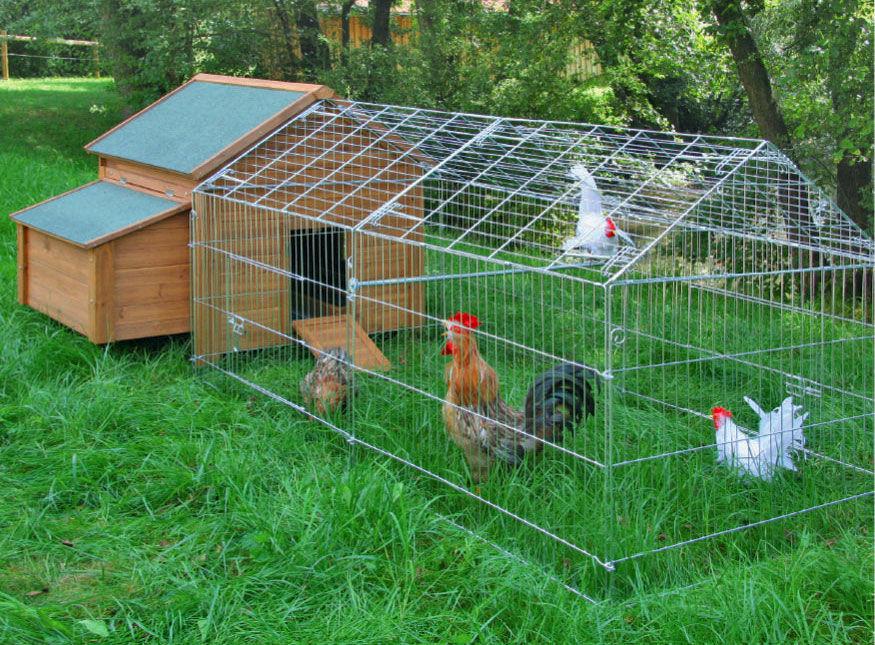 Galvanised outdoor poultry pet animal pen run only - Enclos pour poules ...