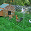 Galvanised Outdoor Poultry & Pet Animal Pen/Run additional 1
